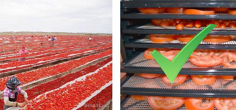 خشک کردن گوجه به روش صنعتی