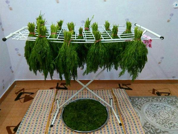 خشک کن سنتی